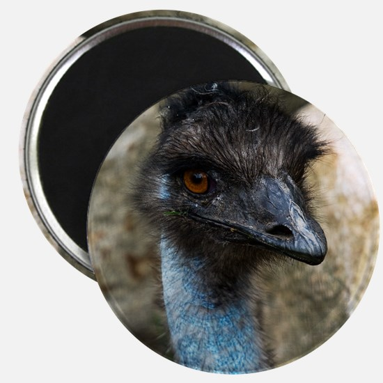 Emu Head Magnet