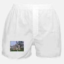 Camp Chase Boxer Shorts