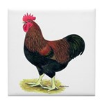 Partridge Rock Rooster Tile Coaster