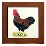 Partridge Rock Rooster Framed Tile