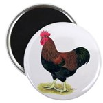 "Partridge Rock Rooster 2.25"" Magnet (100 pack"
