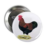 "Partridge Rock Rooster 2.25"" Button (100 pack"