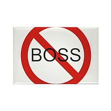 No Boss Rectangle Magnet