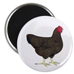 Partridge Rock Hen Magnet