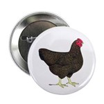 "Partridge Rock Hen 2.25"" Button (100 pack)"