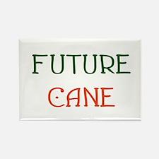Future Cane Rectangle Magnet