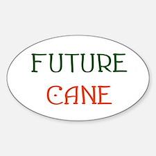 Future Cane Oval Decal
