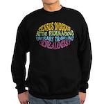 Census Digging Sweatshirt (dark)