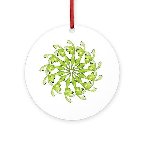 Burmeistera bat mandala Ornament (Round)