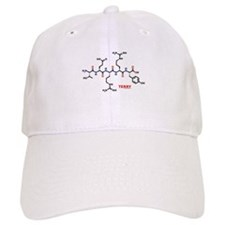 Terry name molecule Baseball Cap