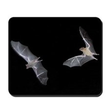 TWO BAT Mousepad