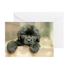 Big Black Dog Greeting Card