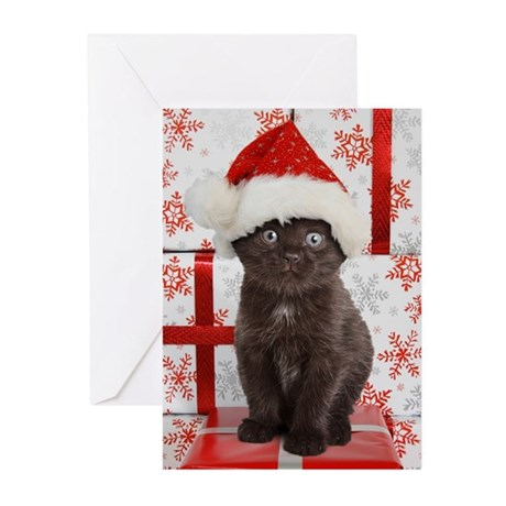 Christmas Kitten Greeting Cards (Pk of 10)