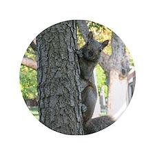 """Peek-A-Boo Squirrel 3.5"""" Button"""