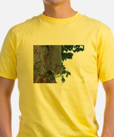 Treetop Squirrel T