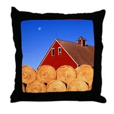 Cute Heartland Throw Pillow