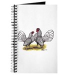Silver Sebright Bantams Journal