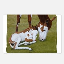 Paint Mare & Foal Postcards (Package of 8)