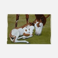 Paint Mare & Foal Rectangle Magnet