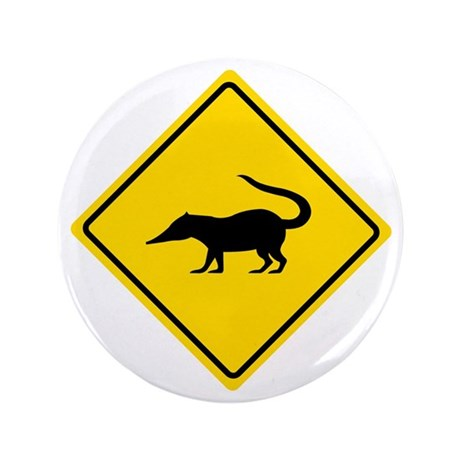 "Coatimundi Crossing, Guatemala 3.5"" Button"