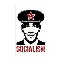 Obama Socialism Rectangle Decal
