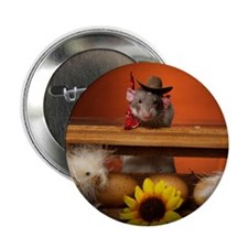 "Aimee's rats nest 2.25"" Button (10 pack)"