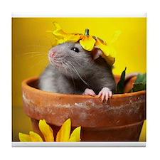 Aimee's rats nest Tile Coaster
