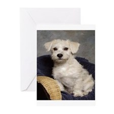 Schnoodle Time Greeting Cards (Pk of 10)