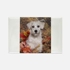 Schnoodle Time Rectangle Magnet