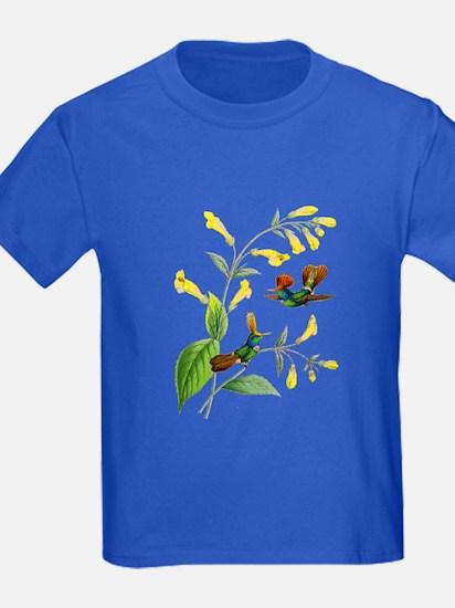 Hummingbirds T