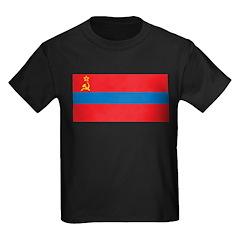 Armenia SSR Flag T