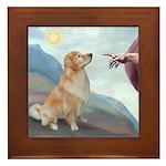 God's Golden (#11) Framed Tile