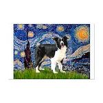 Starry / Border Collie (Z) Mini Poster Print