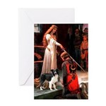 Accolade/Border Collie (Z) Greeting Card