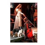 Accolade/Border Collie (Z) Postcards (Package of 8