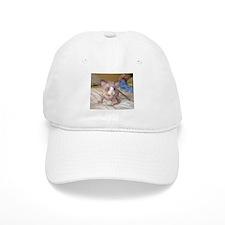 Cute Sphynx cats Baseball Cap