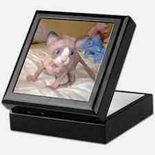 Unique Sphynx cats Keepsake Box