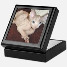 Cool Cat photos Keepsake Box