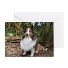 Sheltie Farm and Forest Calen Greeting Card