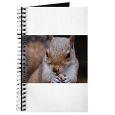Journal cute squirrel