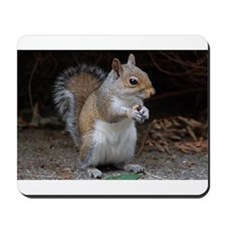 Mousepad cute squirrel