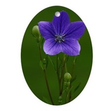 Small Flower Oval Ornament
