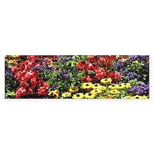 Helaine's Confetti Flowers Bumper Bumper Sticker