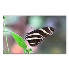 Helaine's Butterfly Rectangle Decal