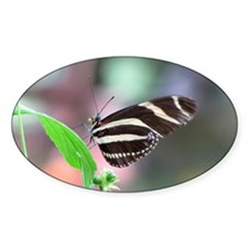 Helaine's Butterfly Oval Decal