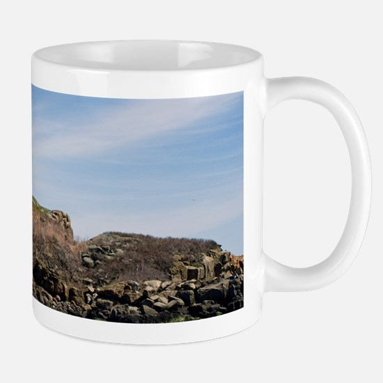 Nubble Light Main Mug