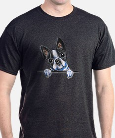 Curious Boston T-Shirt