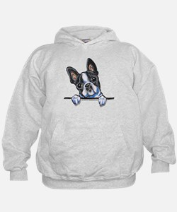 Curious Boston Hoody