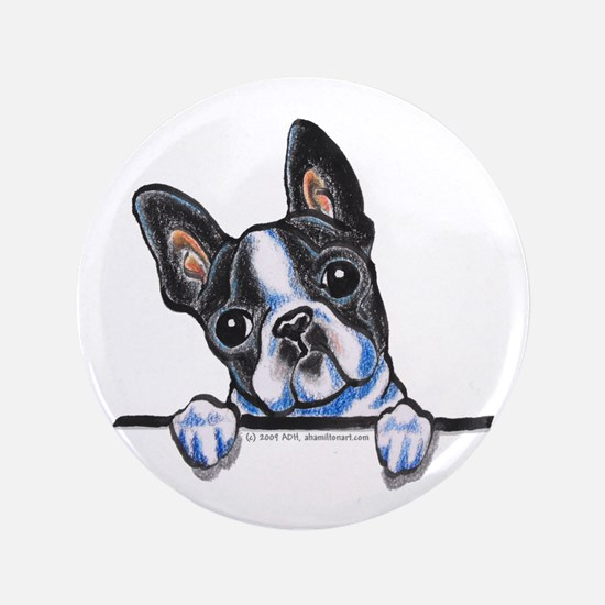 "Curious Boston 3.5"" Button"