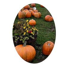 Pumpkin Oval Ornament